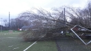 Sturmtief Friederike beim SSV